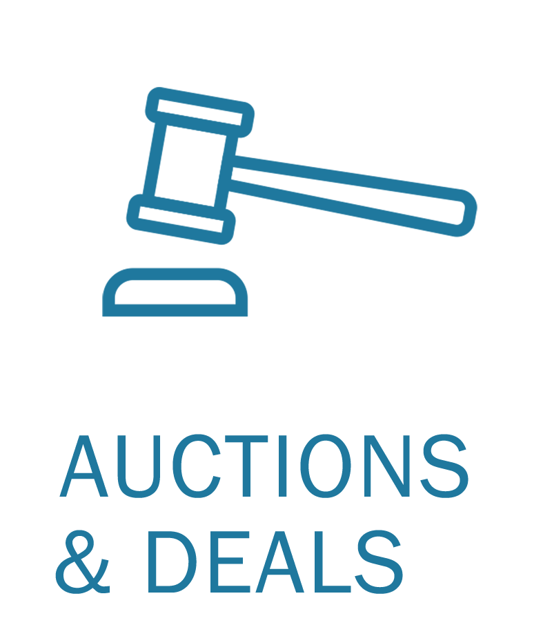 Auctions and Deals